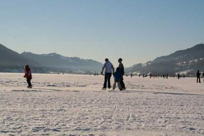 Alpsee im Winter 11