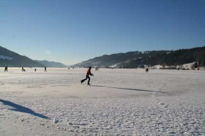 Alpsee im Winter 18