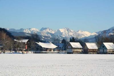 Alpsee im Winter 1