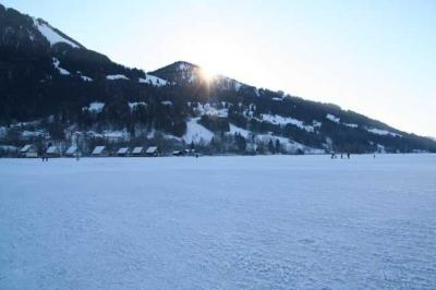 Alpsee im Winter 21