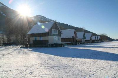 Alpsee im Winter 27