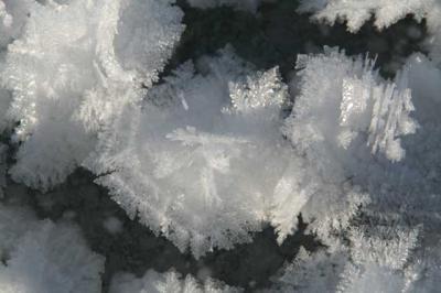 Alpsee im Winter 28
