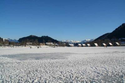 Alpsee im Winter 2