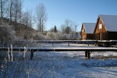 Alpsee im Winter 33