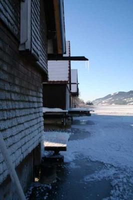 Alpsee im Winter 35