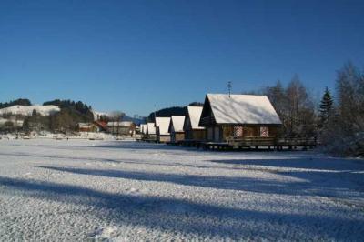 Alpsee im Winter 36
