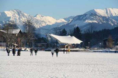 Alpsee im Winter 3