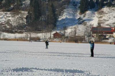 Alpsee im Winter 41