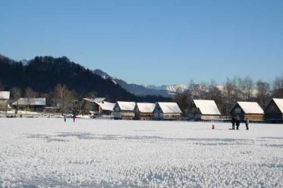 Alpsee im Winter 42