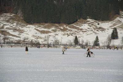 Alpsee im Winter 43