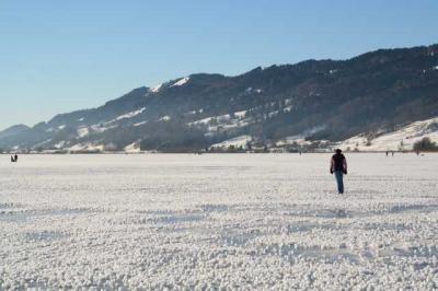 Alpsee im Winter 48