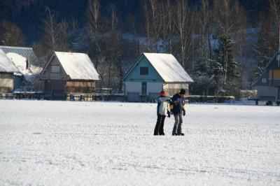 Alpsee im Winter 4