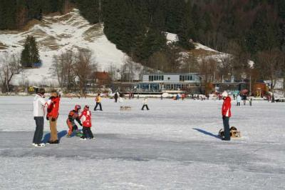 Alpsee im Winter 7