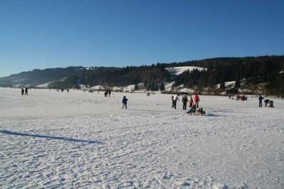 Alpsee im Winter 9