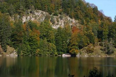 Alpsee Schloss Hochenschwangau 21