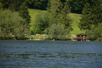 Bootfahrt am Alpsee 32