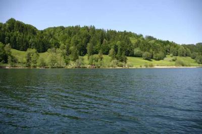 Bootfahrt am Alpsee 34