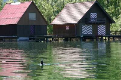 Bootfahrt am Alpsee 81