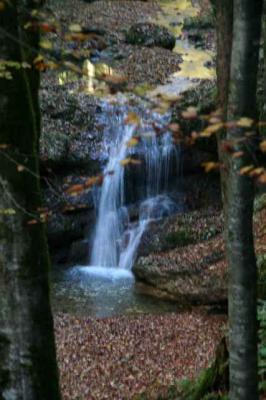 Der Wirtatobel Wasserfall 5