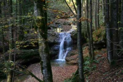 Der Wirtatobel Wasserfall 6