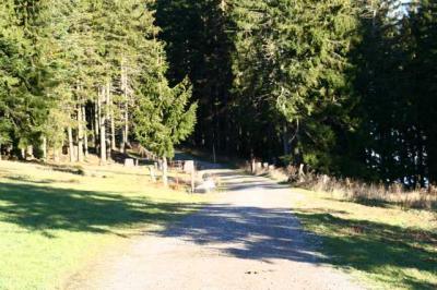 Diepolz Kuhnigundenweg 17