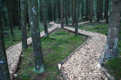 Diepolz Kuhnigundenweg 28