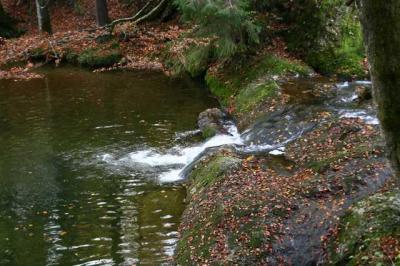 Eibele Wasserfaelle 23