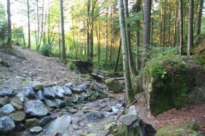 Gruentenwasserall Wildbach 17
