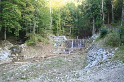 Gruentenwasserall Wildbach 1
