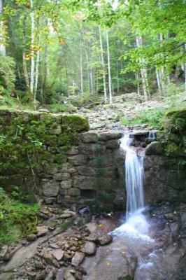 Gruentenwasserall Wildbach 23