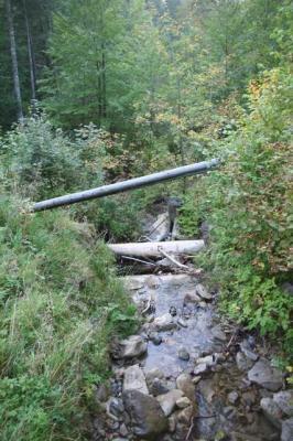 Gruentenwasserall Wildbach 24