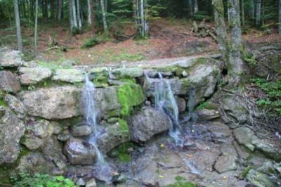 Gruentenwasserall Wildbach 26