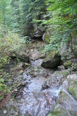 Gruentenwasserall Wildbach 27
