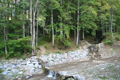 Gruentenwasserall Wildbach 2