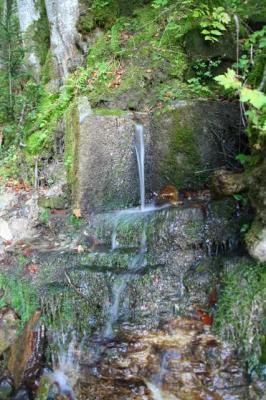 Gruentenwasserall Wildbach 4