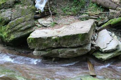 Gruentenwasserall Wildbach 6