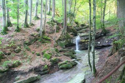 Gruentenwasserall Wildbach 7