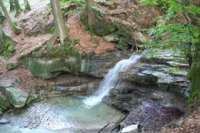 Gruentenwasserall Wildbach 9