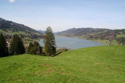 Immenstadt Alpsee 46
