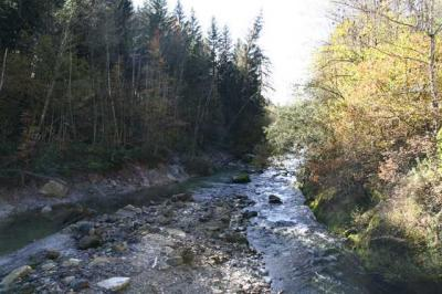 Krebswasserfall Oberstaufen 11