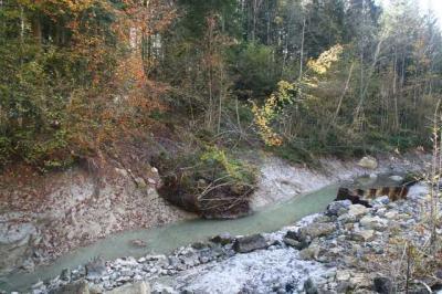 Krebswasserfall Oberstaufen 13
