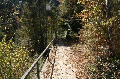 Krebswasserfall Oberstaufen 5