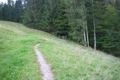 Lustiger Wanderweg 39