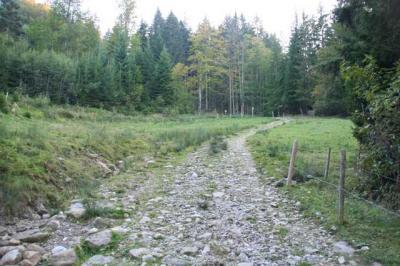Lustiger Wanderweg 44