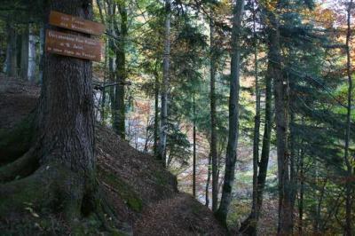 Osterdorfer Wasserfall 11