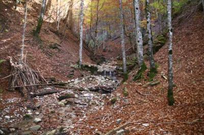Osterdorfer Wasserfall 25