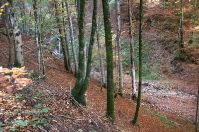 Osterdorfer Wasserfall 29