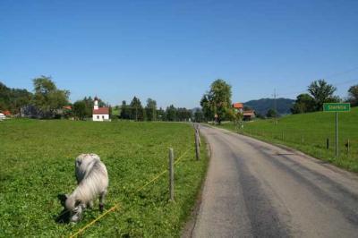 Rettenberg Allgaeu Umgebung 28