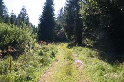 Rettenberg Allgaeu Umgebung 36