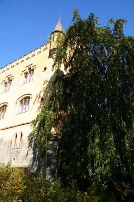 Schloss Neuschwanstein 17